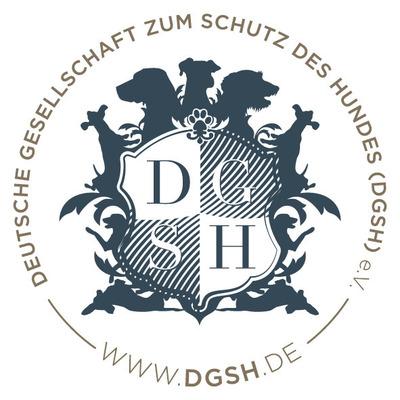 logo-dgsh1