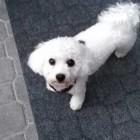 Profilbild Milli